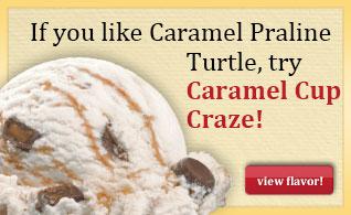 Caramel-Praline-Turtle