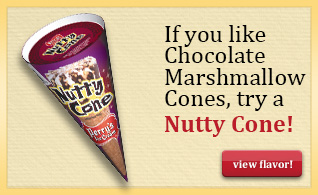Chocolate Marshmallow Cone