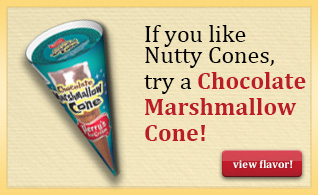 Nutty Cone